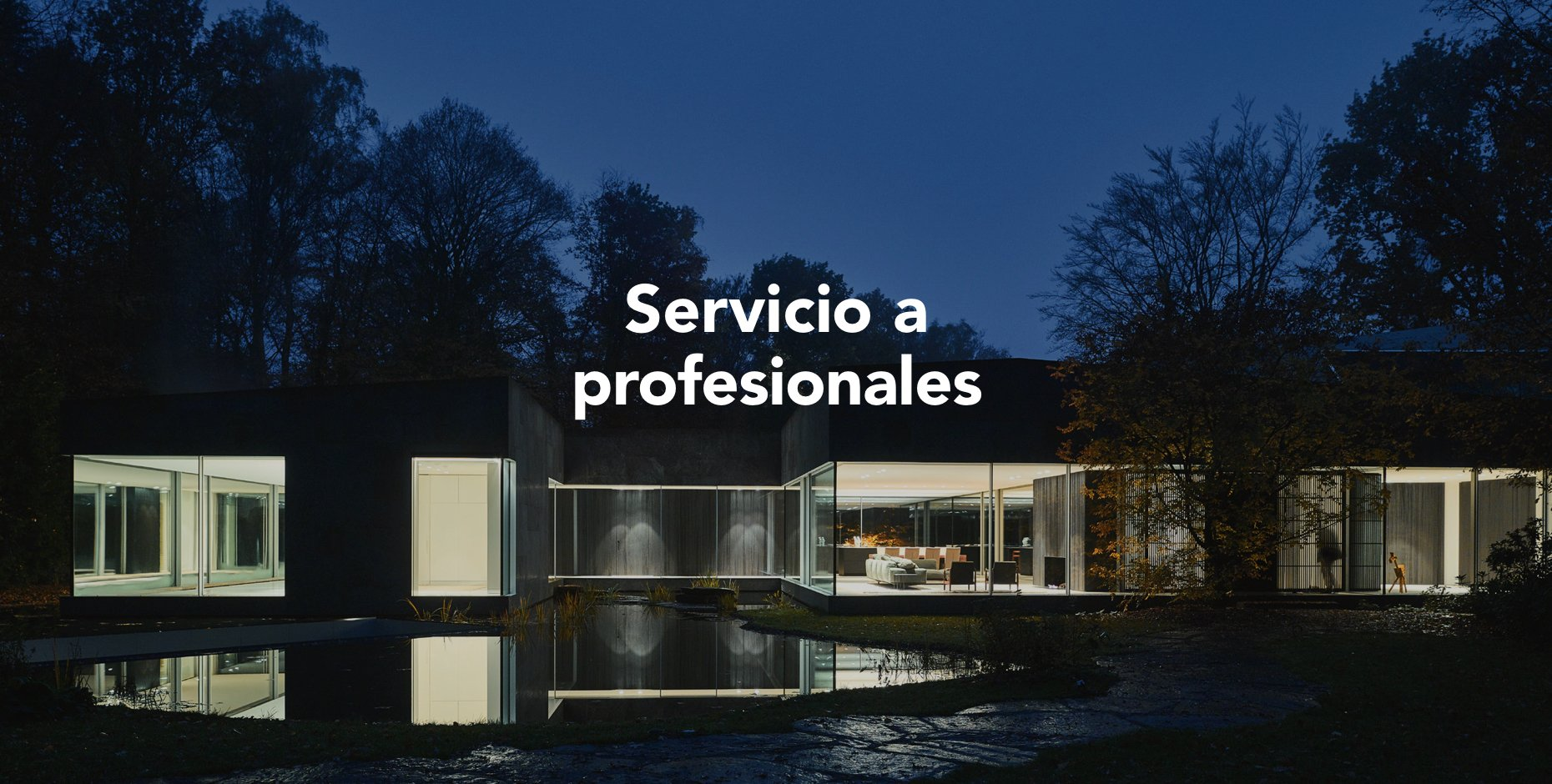 mOK_profesionales Copy